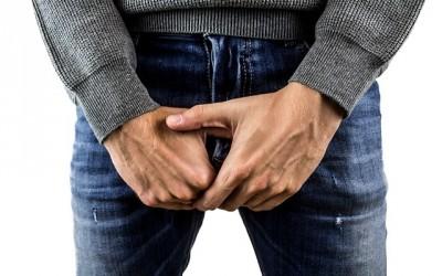 Nützliches über den Penis